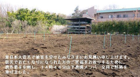 山下農園.jpg