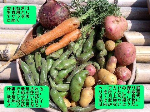 野菜収穫物 池辺.JPG