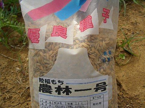 陸稲もち米.jpg