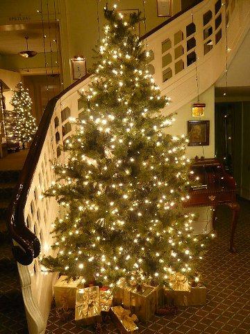 horsenshotel091122.jpg